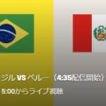 コパアメリカ2019決勝のテレビ放送(地上波)予定!ブラジルVSペルー